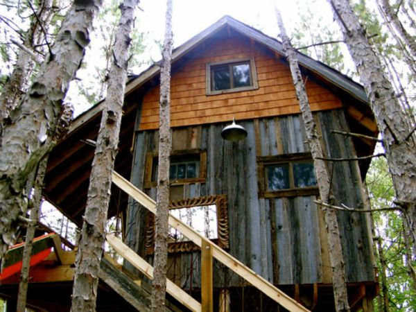 Tree house made from reclaimed materials in Canada : Treehouse in canada2 from www.homedit.com size 600 x 450 jpeg 69kB