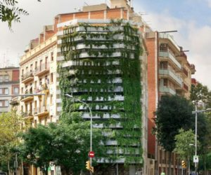 Freestanding green wall in Barcelona