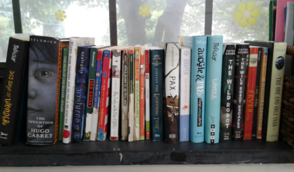 Use Your Window Sill As A Bookcase
