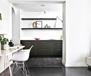 A 47 square meter apartment with black and white interior