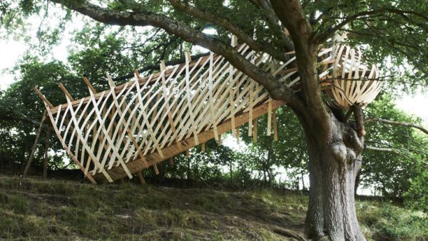 Wooden Treehouse In Devon