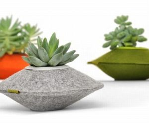 Saucer-Shaped Planters By Flip&Tumble