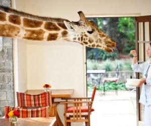 Five unusual accomodations around the world