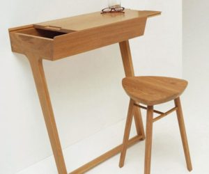 The table that has only two legs