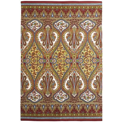 Nice Baroque Rug with Paisley Design