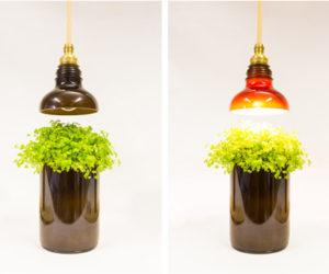 Glass Bottle Lamps by DeGross Studio