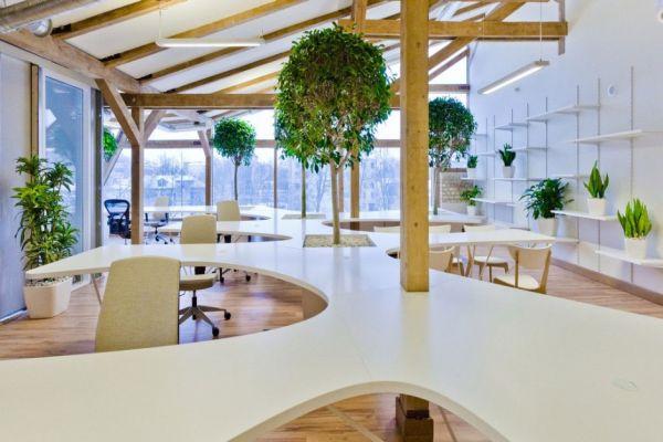 Fun Greenhouse Idea in an Office by OpenAD