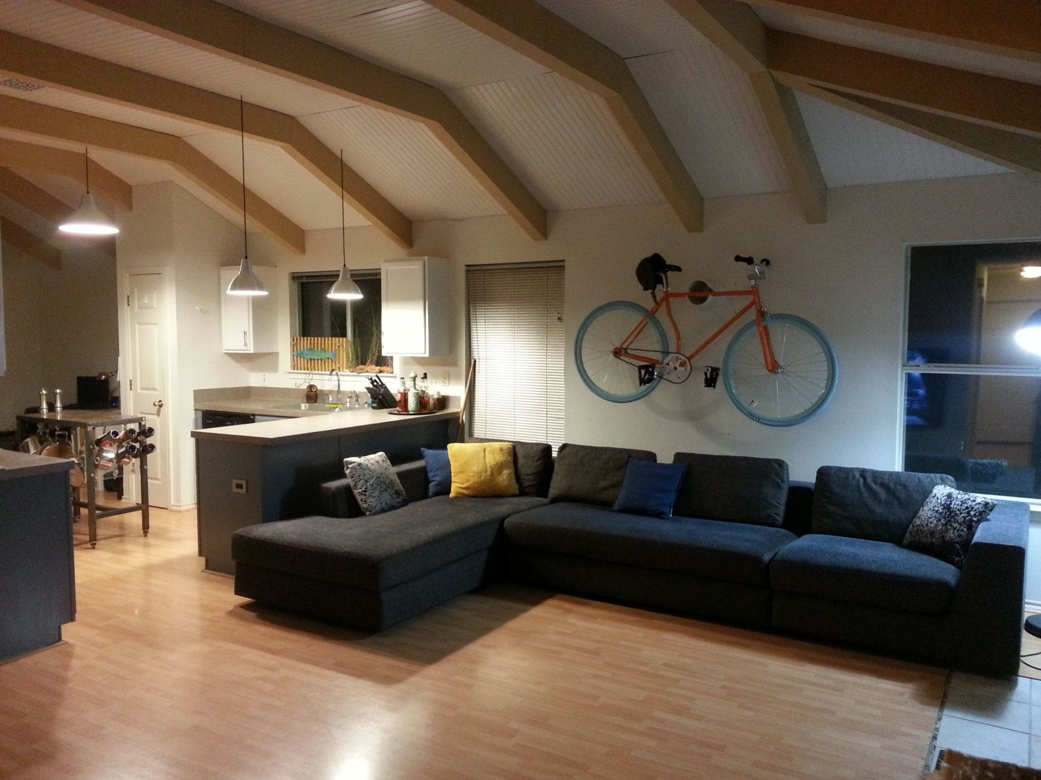 Living room Bike hanger
