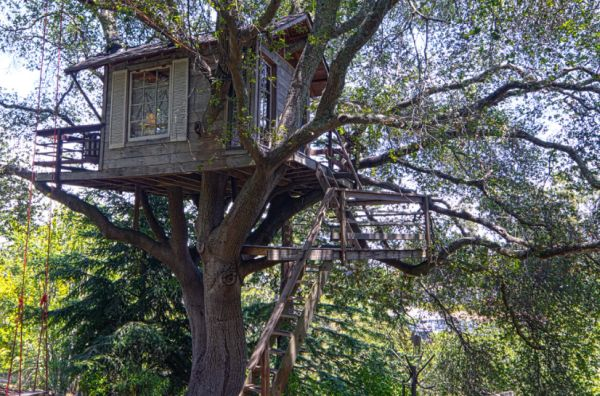 A modern tree house in a 100-year old oak, a perfect place to make new memories