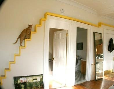 for example you can build them a set of stairs and climbing spaces and you can even turn a room into a playroom for the cats the living room would be a - Cat Room Design Ideas