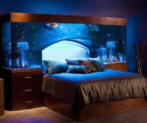 A spectacular headboard aquarium by Acrylic Tank Manufacturers