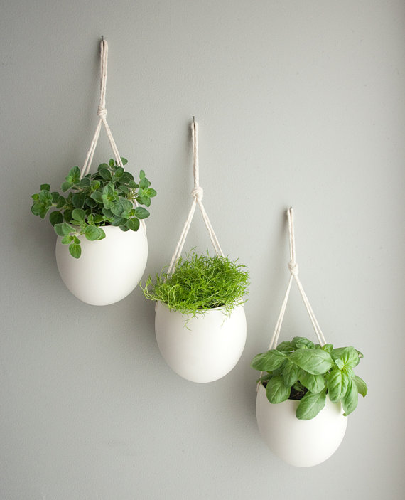 Five indoor garden ideas for a refreshing new fall for Design indoor plant pots uk