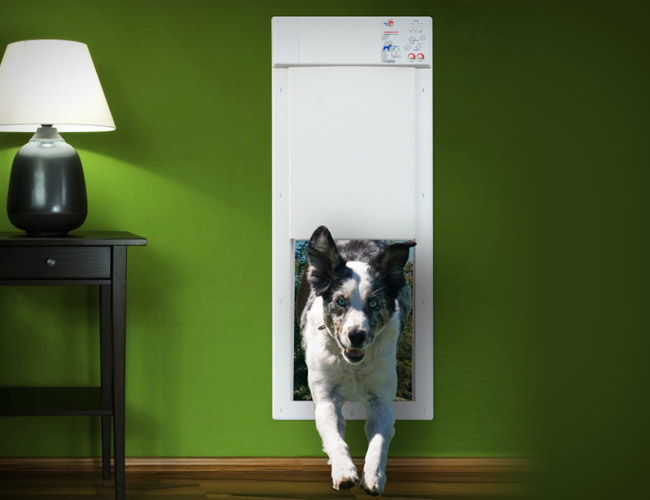 The Power Pet Electronic Pet Door A Mart Accessory For A