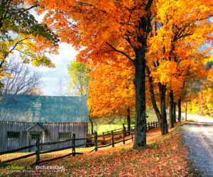 Spectacular foliage destinations for this season