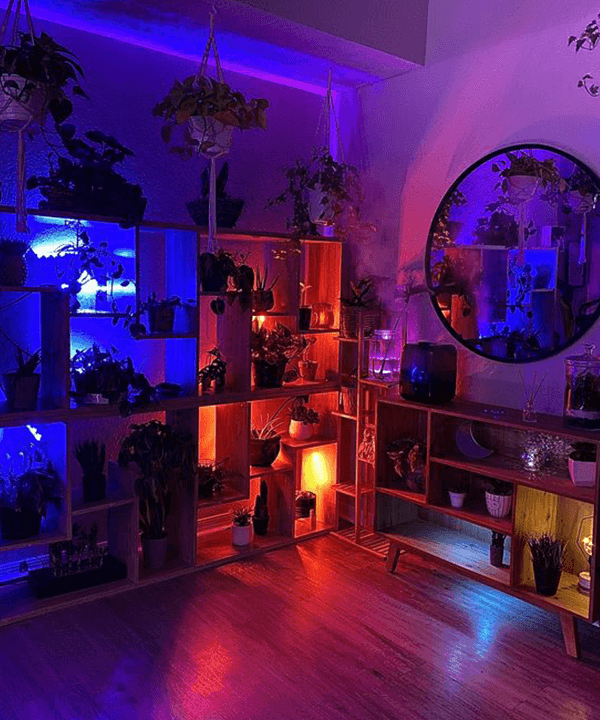 low cost house decor ideas Adjust Lighting With Special Bulbs