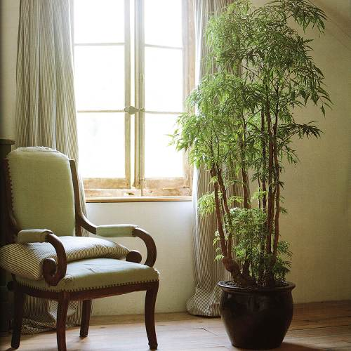 low cost house decor ideas Incorporate Plants Into Your Décor