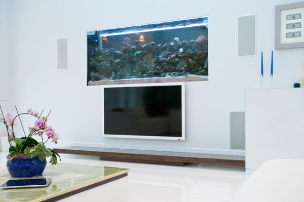 aquariums a forever beautiful decoration for any type of space. Black Bedroom Furniture Sets. Home Design Ideas