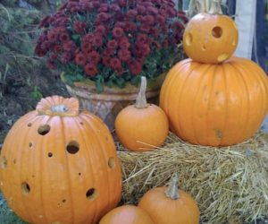 Decorating with Designer Pumpkins