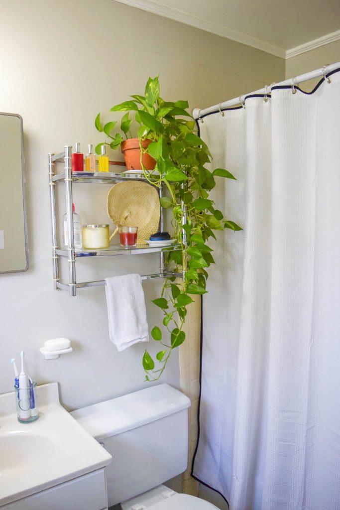 Include a Dark Outline on a Light Shower Curtain
