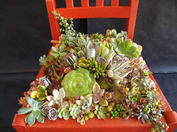 Turn Old Chairs Into Beautiful Flower Beds And Planters