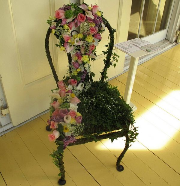suculent old chair flowers4