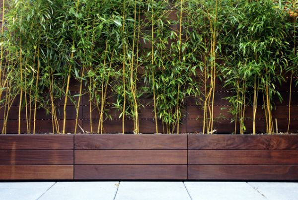 Modern Planters garden design trends with contemporary planters