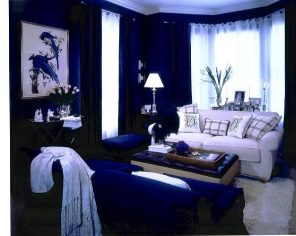 Cool blue living room ideas Black white blue living room