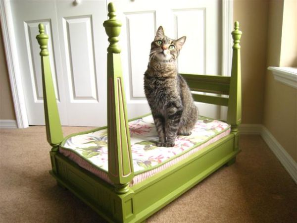 10 diy beds for your loving pet friends for Homemade cat bed