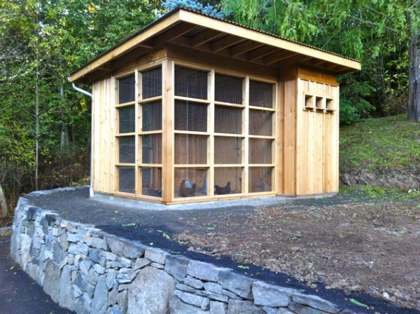 How to design a chicken house for your garden for Design your house