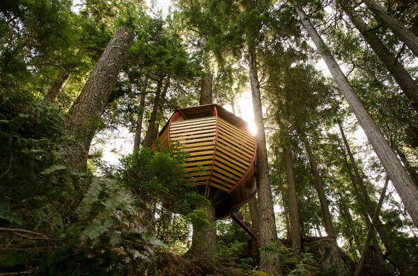 Top 5 Unusual Egg Shaped Houses