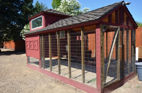 How to design a chicken house for your garden for Chicken coop interior designs