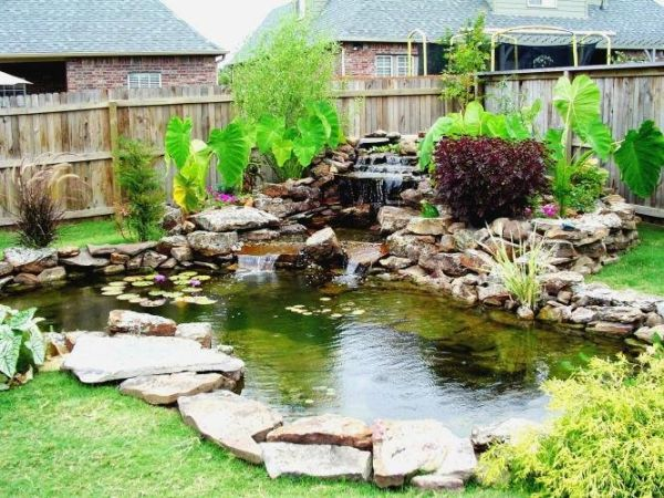 What you need to know about garden koi ponds for Garden pond design