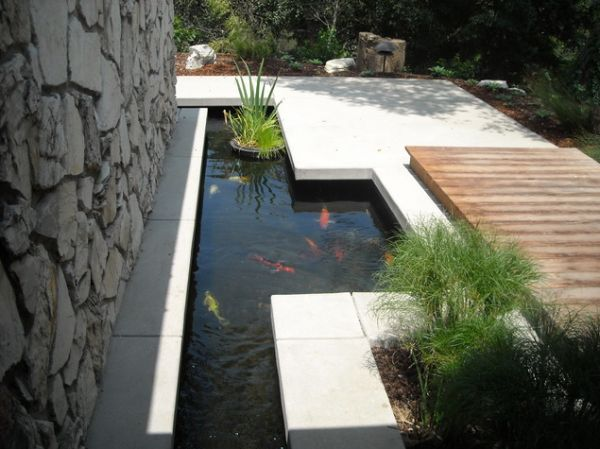 What you need to know about garden koi ponds for Turn pool into koi pond