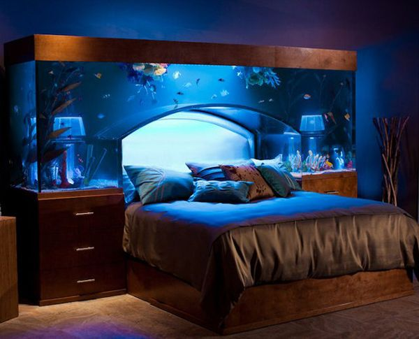 13 unexpected aquarium design ideas for Fish tank built into wall