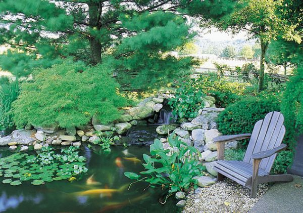 What you need to know about garden koi ponds for Japanese koi pond garden design