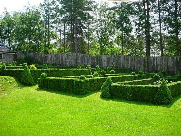 15 amazing ideas of topiary art for your garden for Topiary garden designs