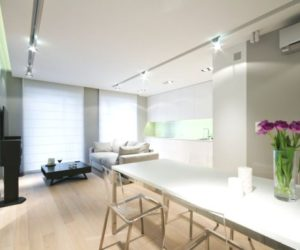 The Minimalist And Sophisticatedly-Renovated White & Water Apartment