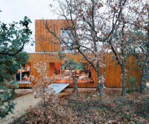 Sustainable House Hidden In A Dense Oak Forest