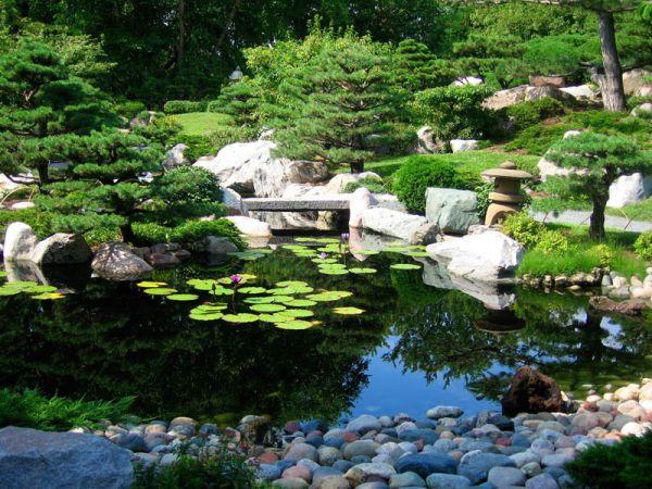 Mesmerizing Garden Pond Design Ideas