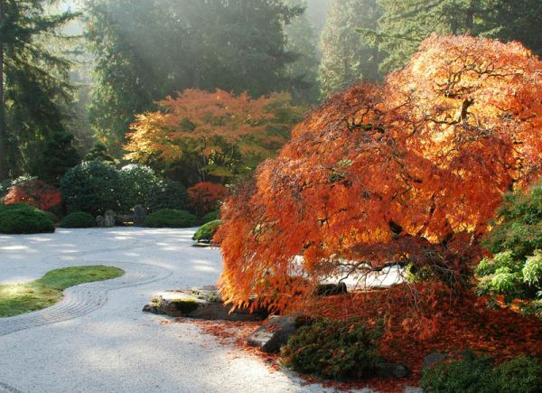 Good View In Gallery A Japanese Garden Is Beautiful Throughout ... Ideas
