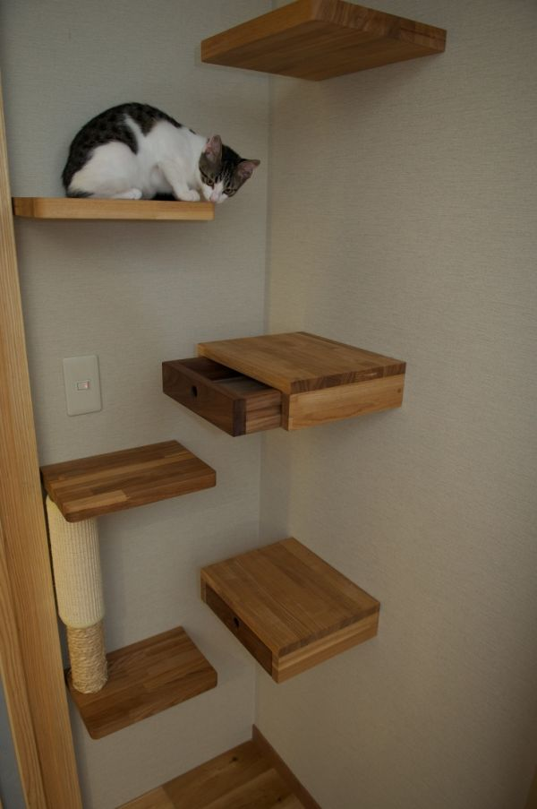 Secret drawer ideas perfect for hiding things in plain sight for Bookshelf cat tower