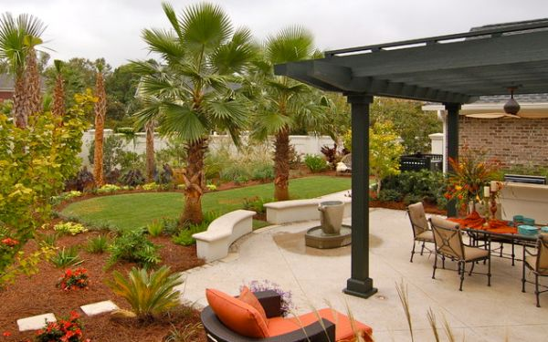 Add Tropical Charm To Your Backyard By Opting For Palm Trees on Palm Tree Backyard Ideas id=76740