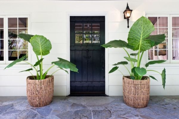View In Gallery Put Flower Pots On The Steps Leading To Your Front Door Create A Beautiful Path
