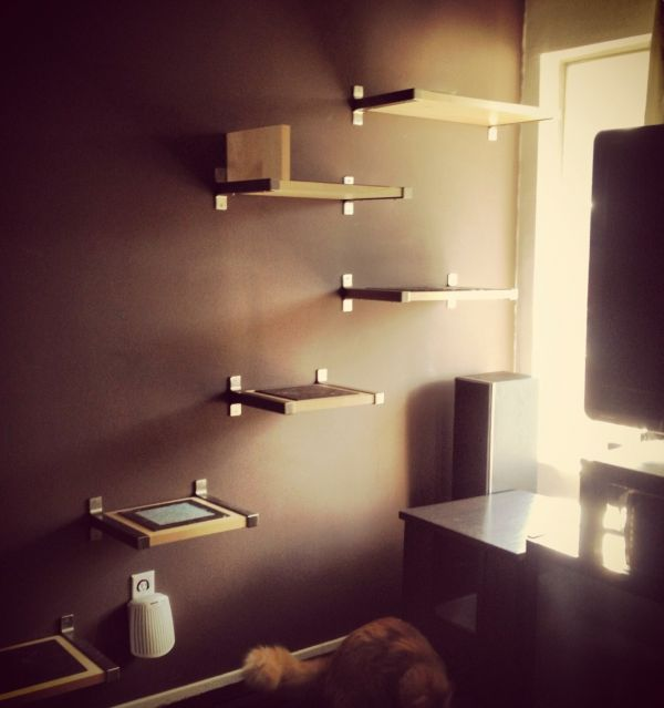 take the time to build cat shelves fun for both you and your pet rh homedit com DIY Cat Tree Indoor Catwalks for Cats