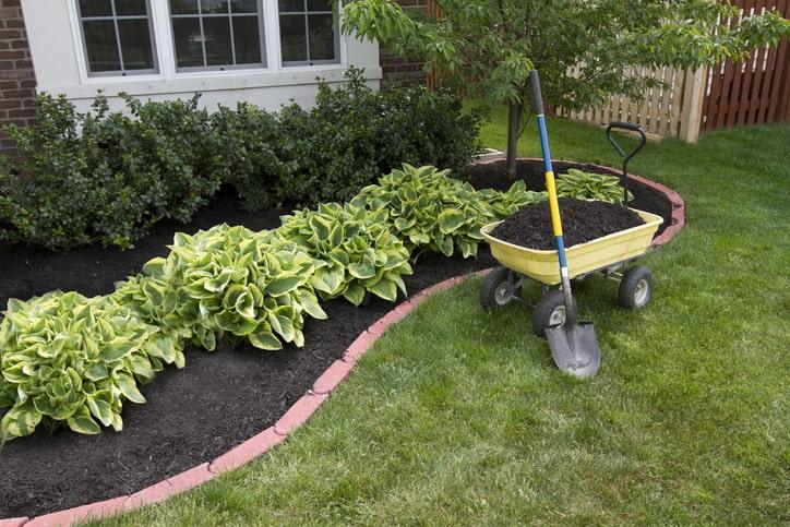 Landscape Maintenance Tips