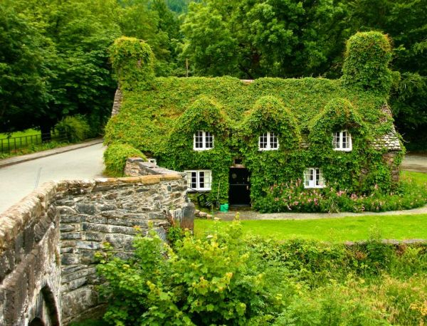 22 Peaceful Cottage Designs That Seem Like Taken From A