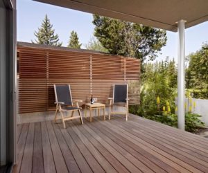 How To Get Some Privacy Into Your Backyard 10 Modern Ideas