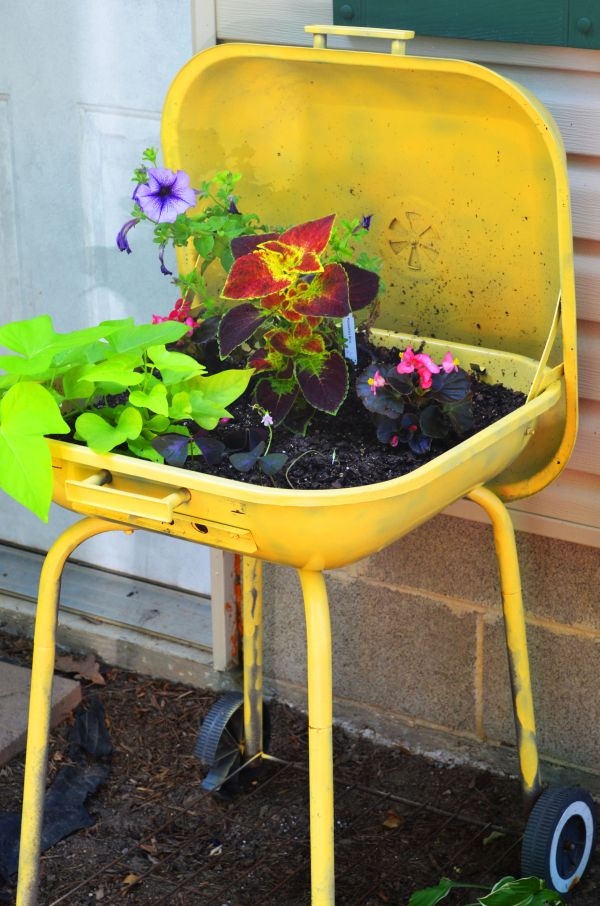 5 Unique Planter Ideas