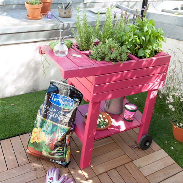 Add Color To Your Garden With Eye Catching Accent Details