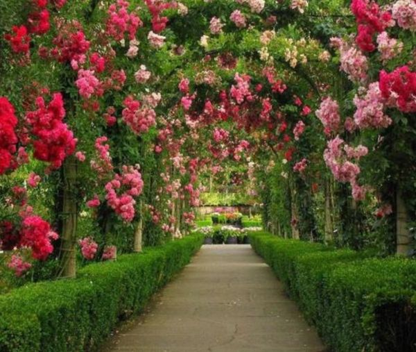 Flower Garden Path 55 inspiring pathway ideas for a beautiful home garden